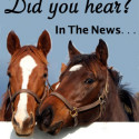 Alabama Horse Fair is March 5-6 at Garrett Coliseum in Montgomery, AL