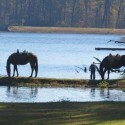 Southern Horse Talk-Paul M Grist State Park