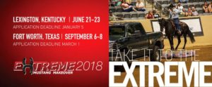 Kentucky Extreme Mustang Makeover 2018